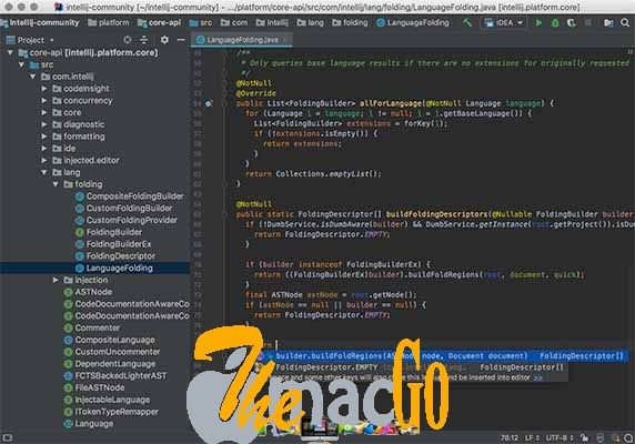 JetBrains GoLand 2018 for mac free download themacgo