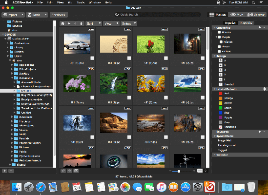 ACDSee photo studio 2018 mac dmg full version themacgo