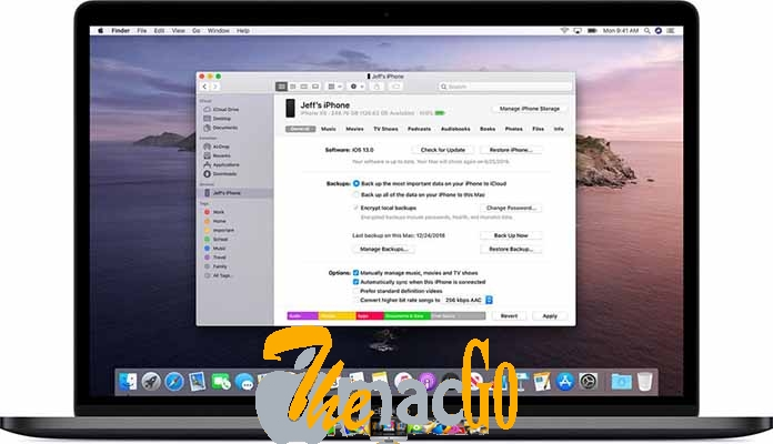 macOS Catalina 10_15 (19A583) for mac free download themacgo
