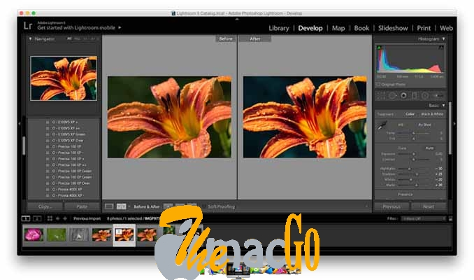 vsco film pack for mac free download themacgo
