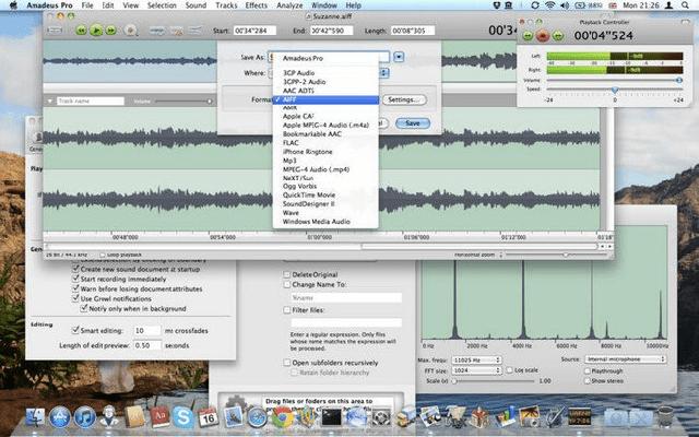 Amadeus Pro 2_6 dmg for mac themacgo