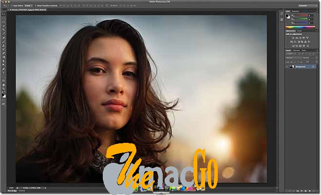 adobe cs6 mac dmg full version themacgo