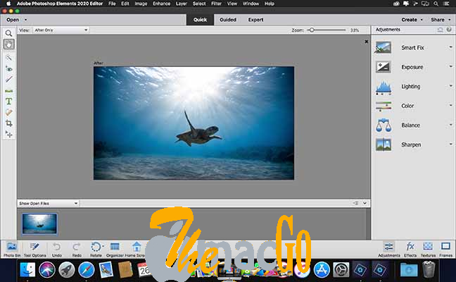 Adobe Photoshop Elements 2021 19 for mac free download themacgo