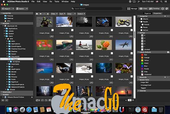 ACDSee Photo Studio 7_1_2 mac dmg full version themacgo